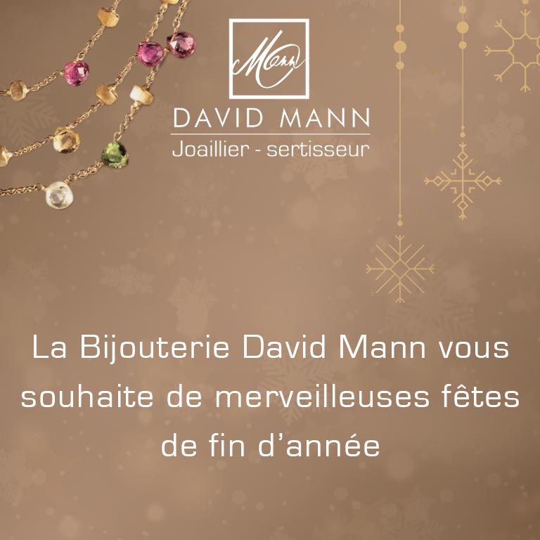 voeux fêtes 2018 2019 david mann